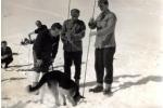 pomoc lavinskega psa pri sondiranju